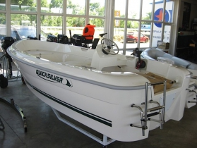 Quicksilver 410 Fish